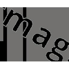 Преобразователь интерфейса Wiegand/1-Wire TWT (Touch Memory)
